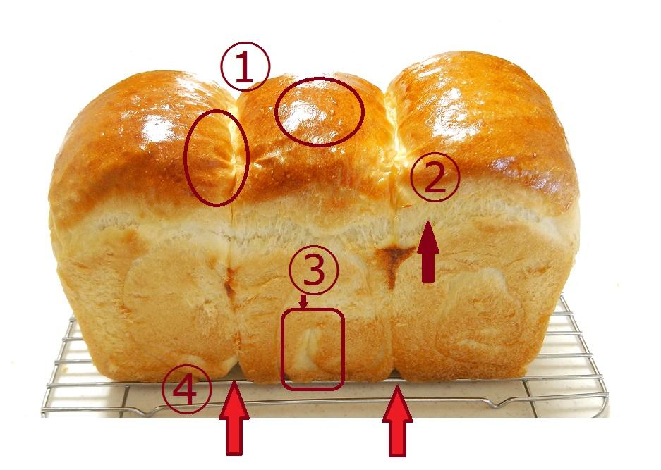 捏ね不足、発酵不足の状態で焼き上げたパン